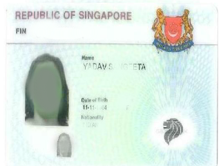 Singapore Immigration lawyers
