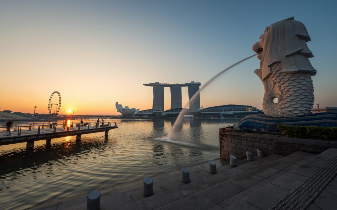 Singapore Immigration Services by Toss-EX